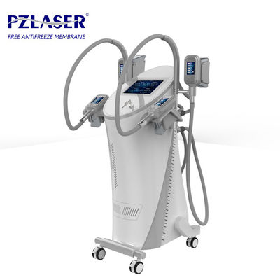 Professional Body Fat Freezing Machine User Friendly Design No Downtime