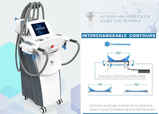 360° Cryolipolysis Fat Freeze Slimming Machine Body Freeze Machine 4 Handpieces